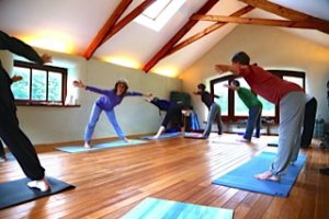 On our yoga teacher training course will practice an active, energising and aesthetic form of yoga